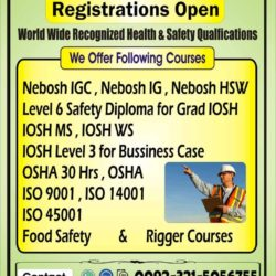HSE Nebosh IGC HSE Level 6 Safety Diploma for Grade Iosh O3215056755 (4)