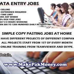 dataentry copy