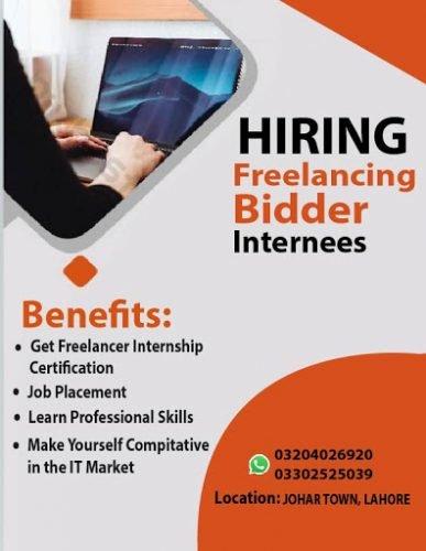 freelancer bidder 19-01